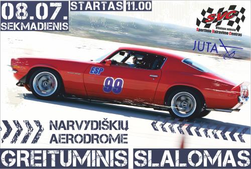 Greituminis slalomas Narvydiškių aerodrome